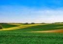 Június végétől új támogatás segíti a szakképzett munkaerő megtartását az agráriumban